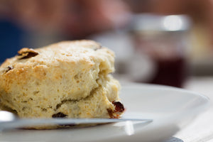 Cranberry Bacon Brunch Scones with Cranberry Pecan Cream Cheese | Recipes | Well Seasoned