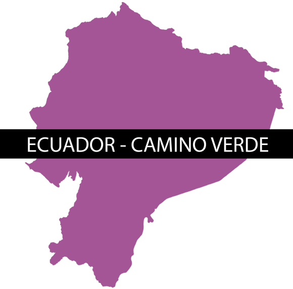 ECUADOR CAMINO VERDE - RAW - Sweet Envy Chocolate and Tea LLC