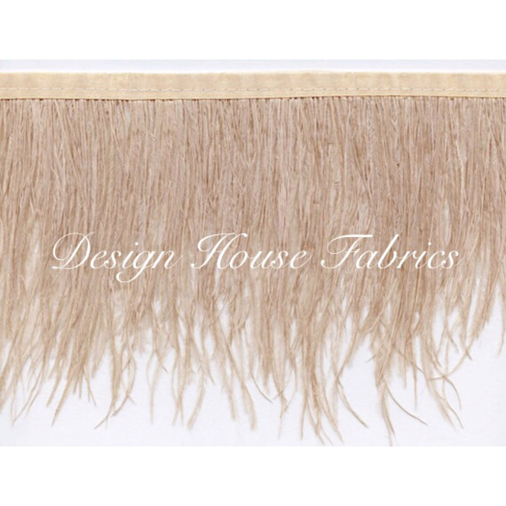 Ostrich feather trim- Champagne