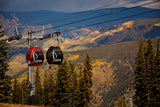 """Aspen Gondola in Autumn"""