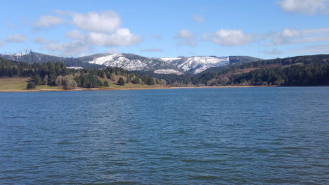 Hagg Lake Spring Hikes Near Hillsboro Oregon