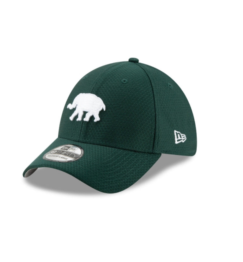 Oakland A's New Era Kids 3939 BP Hat