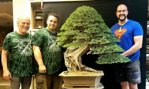About Us Superfly Bonsai