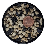 Professional Bonsai Soil Mix - Premium Blend