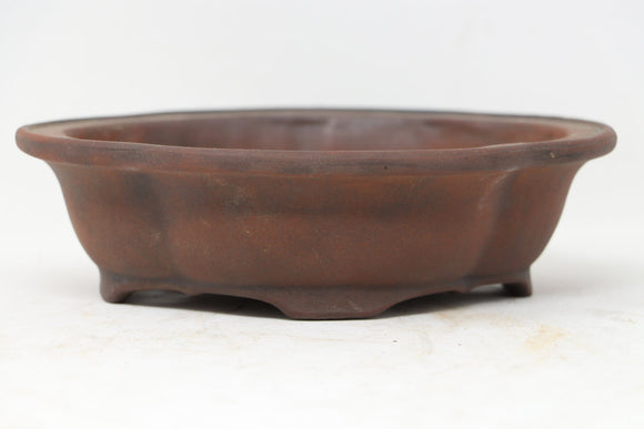 Ibuki Mokko Unglazed Bonsai Pot - European - 7.25