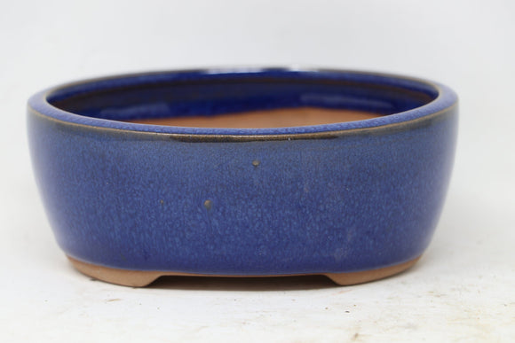 Chinese Production Blue Oval Bonsai Pot - Glazed - 5.5