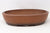 NFS - Literati Shimpaku In this Pot - Japanese Shouzan Oval Bonsai Pot