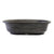 OVA-19 Oval Mica Bonsai Training Pot - OVA Series