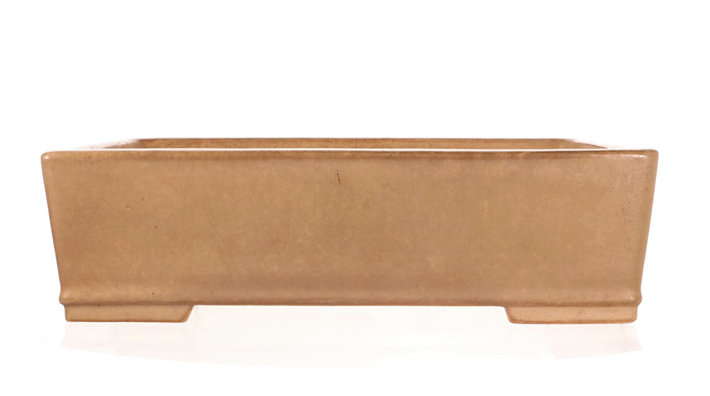 "Tokoname Koyo Cream Glazed Rectangle Bonsai Pot- 12"" x 8.75"" x 3.5"""