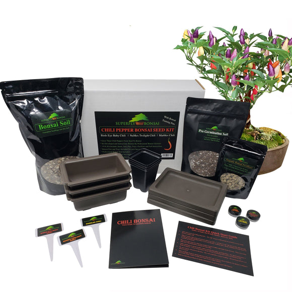 Level2 Bonchi Chili Pepper Bonsai Tree Growing Seed Kit