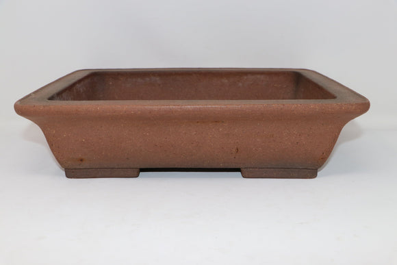 Crypotmeria in this pot. Do Not Sell - Japanese Shouzan Rectangle Bonsai Pot - 14.9