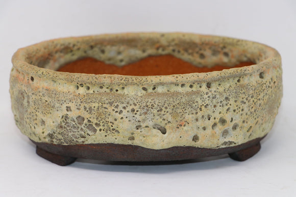 Dale Cachoy Oval Bonsai Pot - 8.75