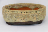 "Dale Cachoy Oval Bonsai Pot - 8.75"" x 8"" x 3.2"""