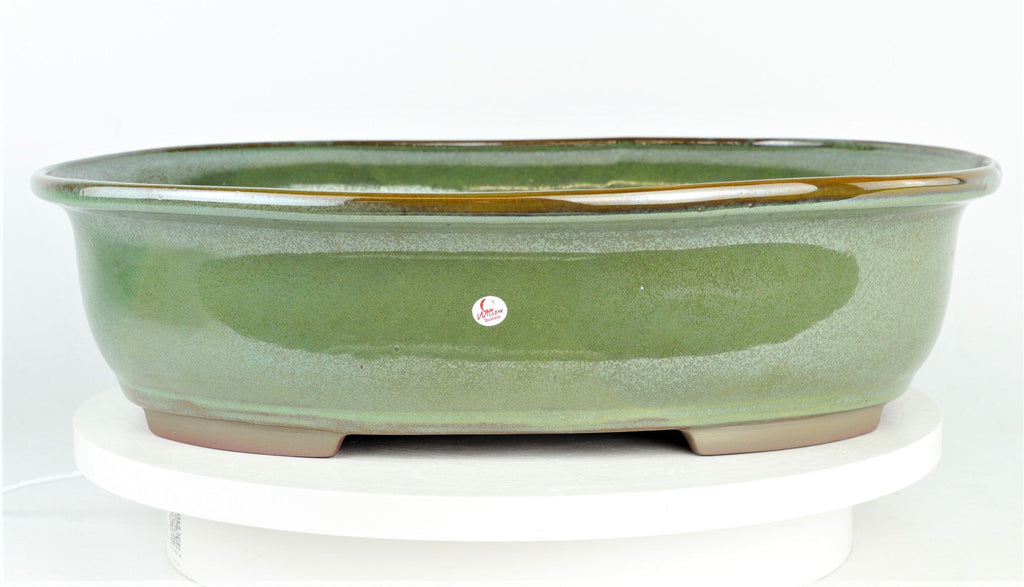 "Seaweed Extra Large Oval Bonsai Pot by Willow Bonsai - 17"" x 13.5"" x 4.5"""
