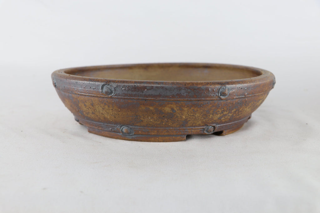 "Sam Miller Unglazed Round Bonsai Pot - 9.5"" x 2.5"""