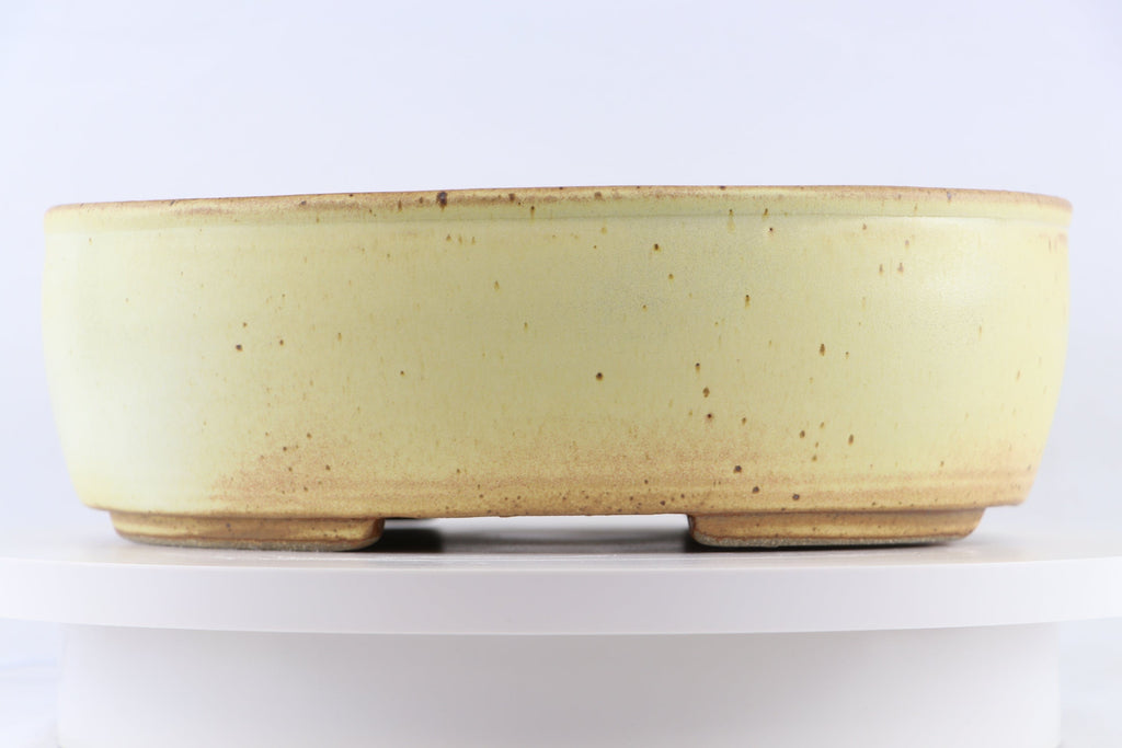"Ross Adams Cream Glazed Oval Bonsai Pot - 12.75"" x 10.75"" x 4.25"""