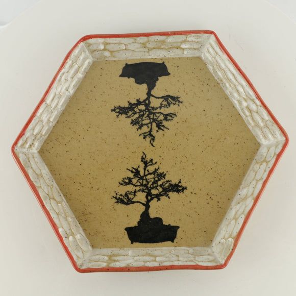 Jodi Fox Tan and Orange Hexagon Bonsai Sushi Plate - 9.75