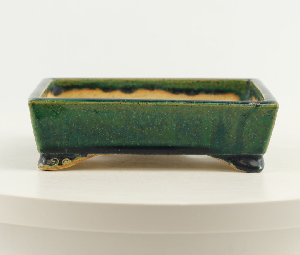 "Tokoname Koyo Green Glazed Rectangle Bonsai Pot - 6.25"" x 5"" x 1.75"""