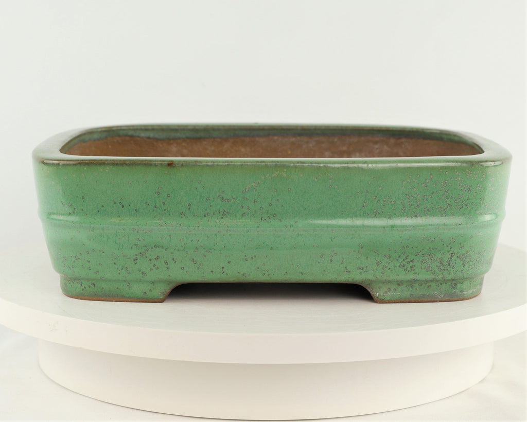 "Tokoname Yamafusa Green Glazed Rounded Rectangle Bonsai Pot - 12.25"" x 9"" x 3.5"""