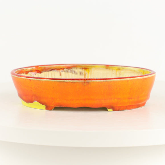Roy Minarai Glazed Orange & Yellow Oval Bonsai Pot - 7.25