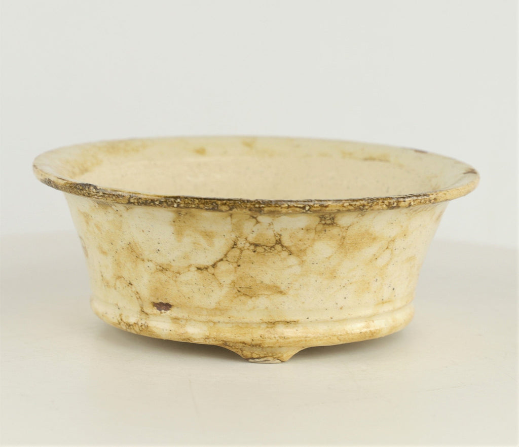 "Brian Soldano Cream Glazed Round Bonsai Pot - 6.5"" x 2.25"""