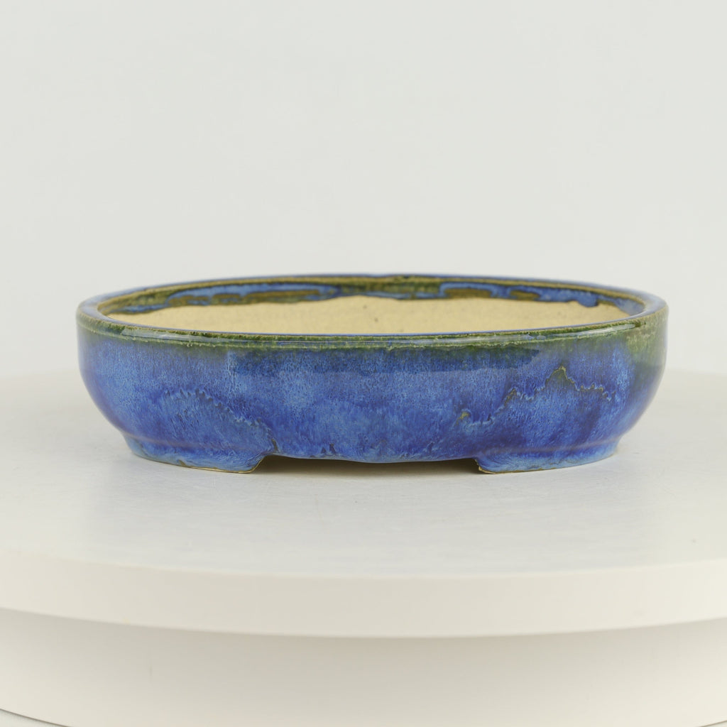 "Roy Minarai Glazed Blue Oval Bonsai Pot - 7.75"" x 6"" x 1.5"""