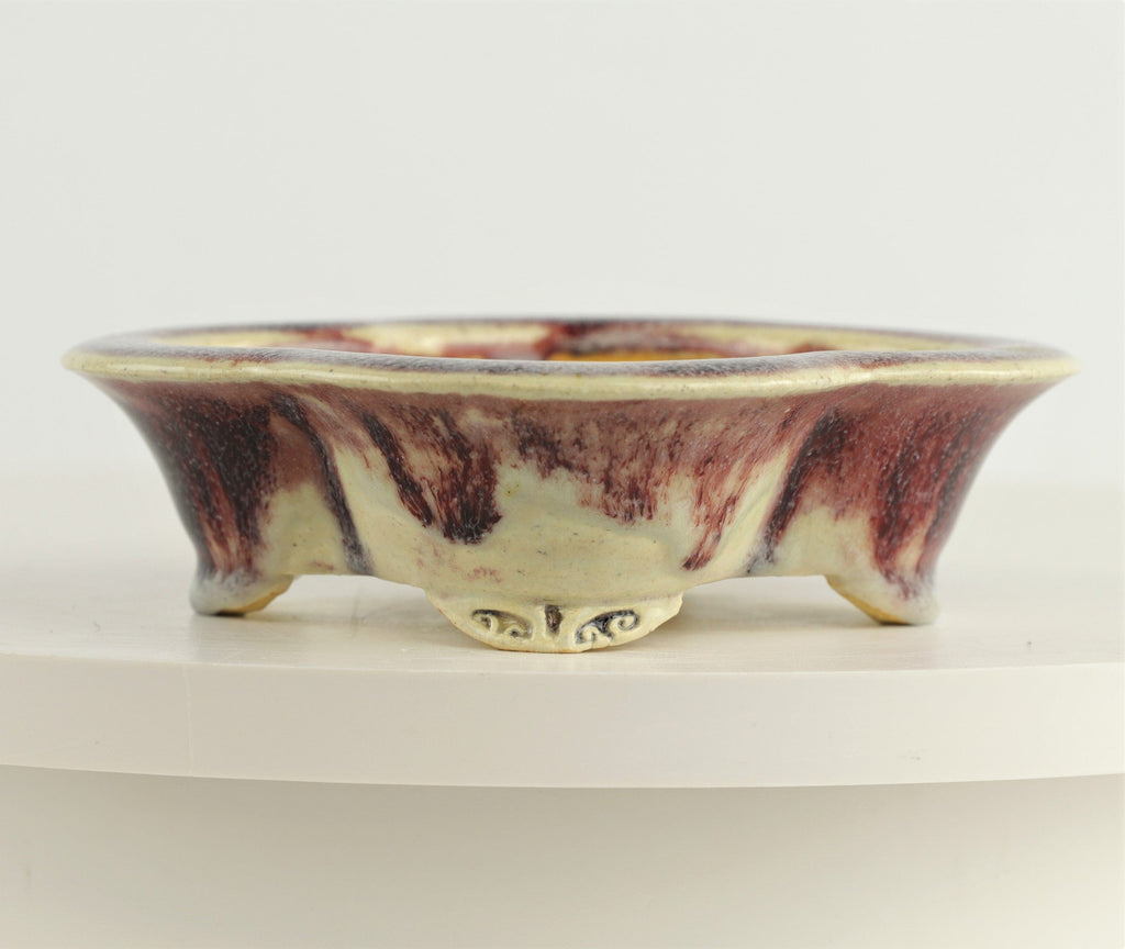 "Roy Minarai Maroon and Cream Glazed Mokko Bonsai Pot - 6.5"" x 5.75"" x 1.75"""