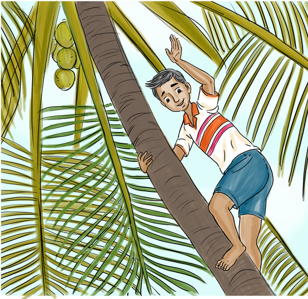 Climb a Coconut Tree