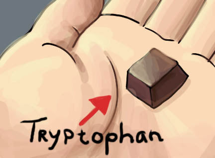 Tryptophan in chocolate