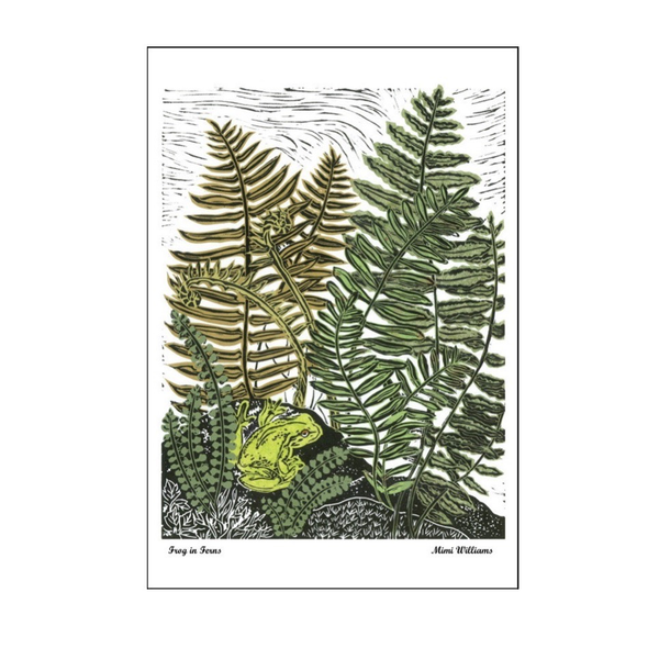 Frog in Ferns