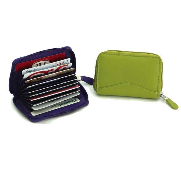Accordian Card Holder