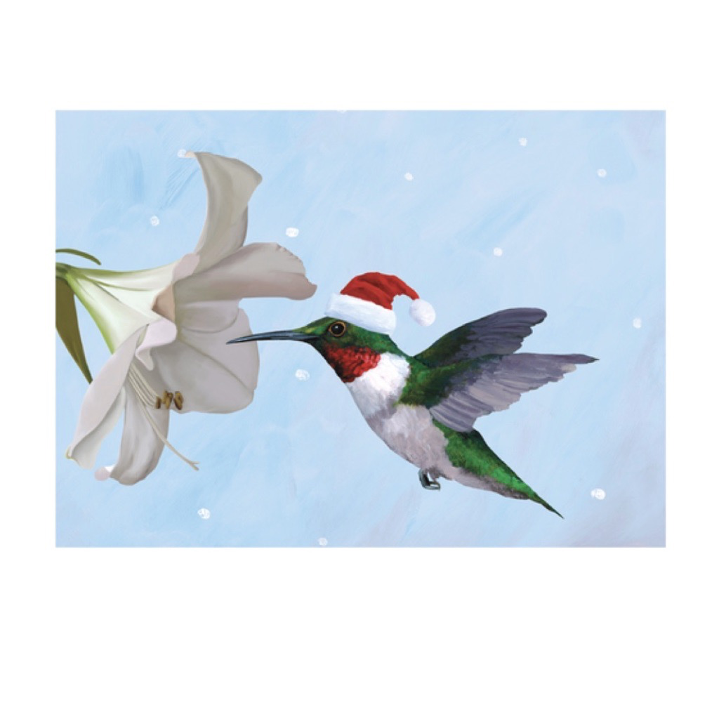 Holiday Card: Hummingbird