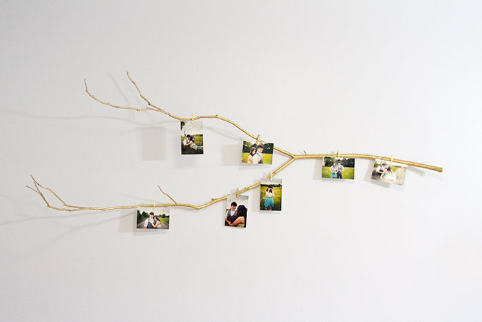 gold-branch-photo-display-hello-luvvy2