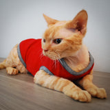 Blake Tank - Berry Playful - Cat-toure Cat Clothes