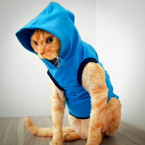 Devon Hoodie - Ocean Breeze - Cat-toure Cat Clothes