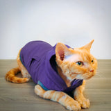 Devon Hoodie - Purple Haze - Cat-toure Cat Clothes