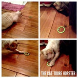 Hopsters - Cat-toure Cat Clothes