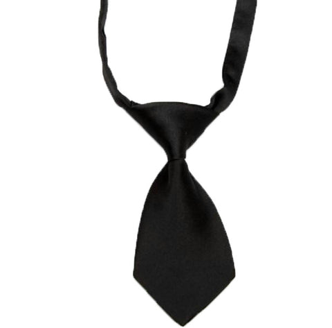 HelloDefiance, Black Dog Tie, best, HelloDefiancecheap