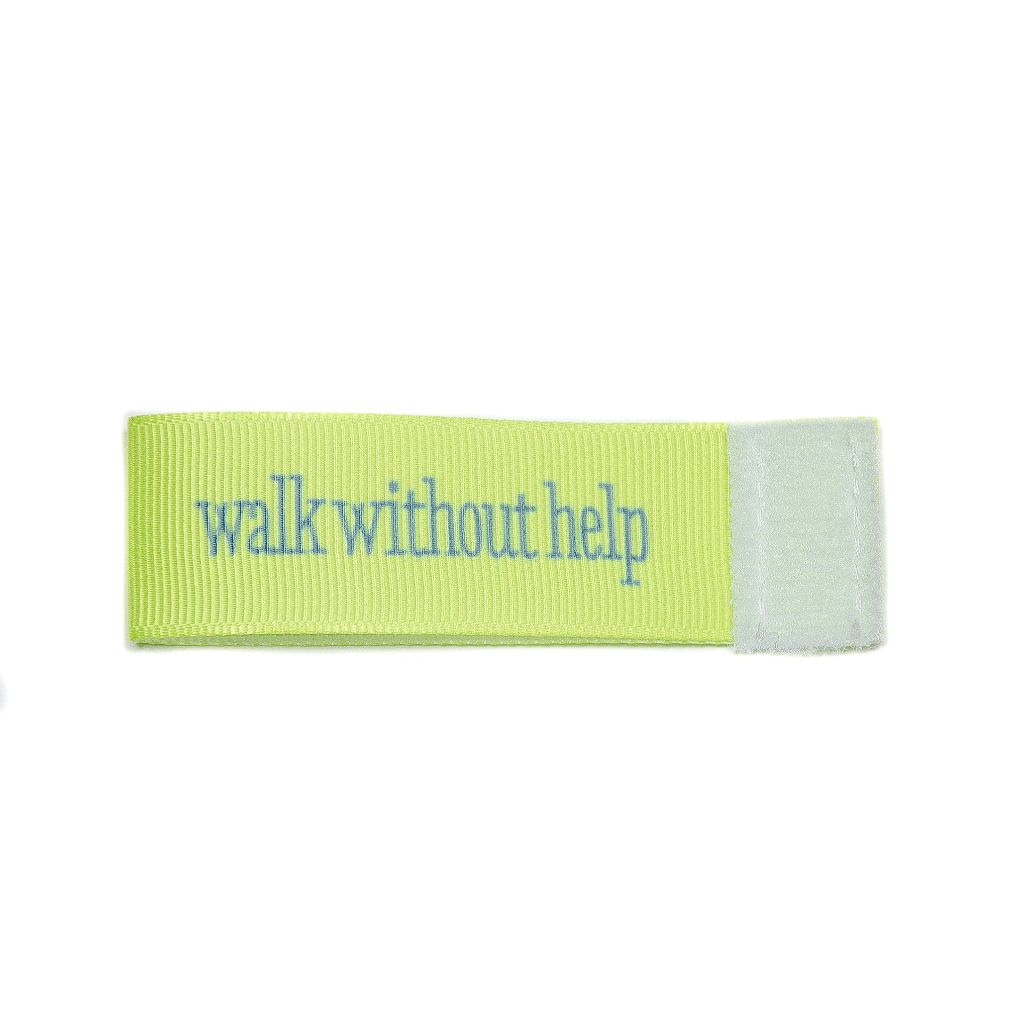 walk without help Wee Charm ribbon green