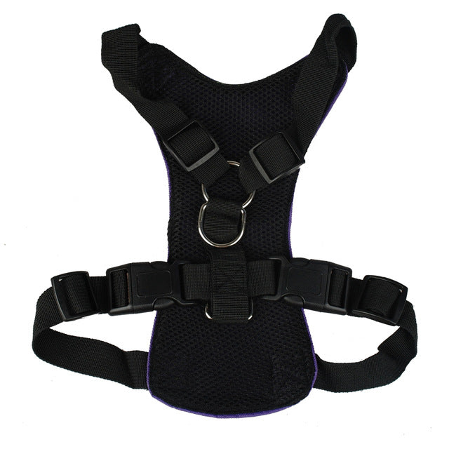 Vehicle Safety Seat Belt Harness for Pets - mycosypet