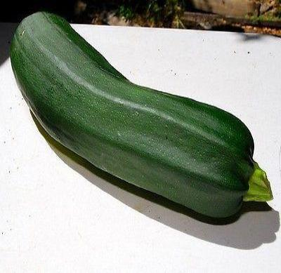 Black Beauty Zucchini Summer Squash 25 seeds * Heirloom *Non GMO* CombSH H11 - Rancupid Mall