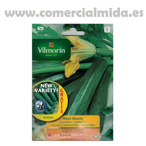 Semillas de CALABACIN BLACK BEAUTY Vilmorin 7g