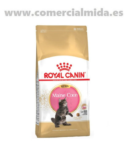 Pienso ROYAL CANIN KITTEN MAINE COON para gatitos