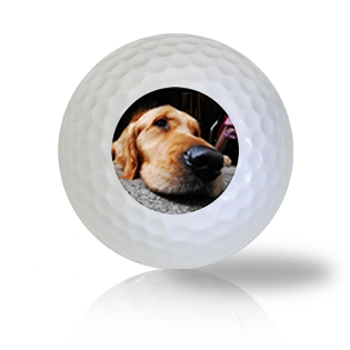 Sleepy Dog Golf Balls