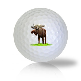 Moose Golf Balls - Found Golf Balls