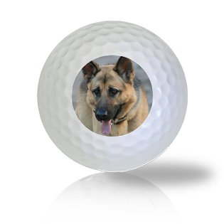 German Shepard Golf Balls - Found Golf Balls