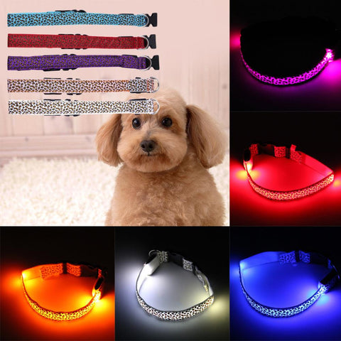 Pet's Safety LED Collar
