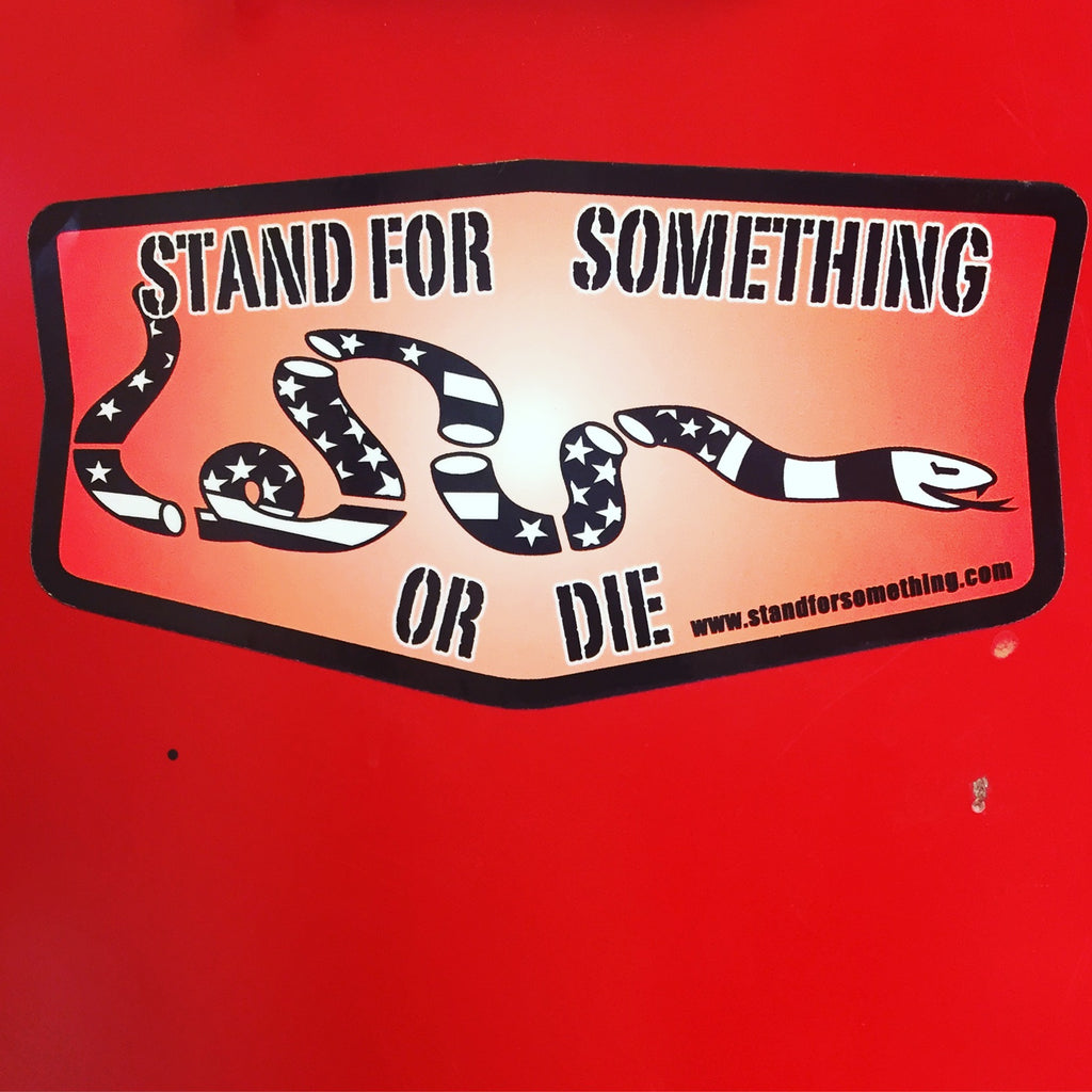 Stand For Something SFS Stand For Something Or Die Sticker