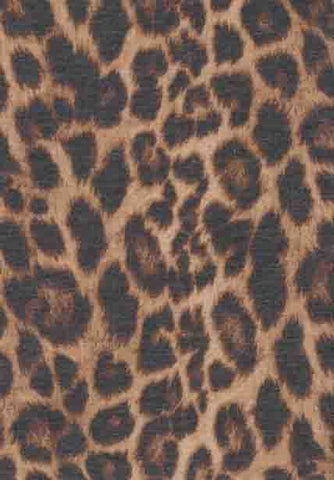 Leopard French Terry