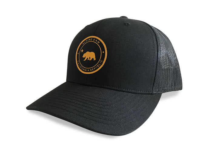 Alpine Dam, The Republic, snap back